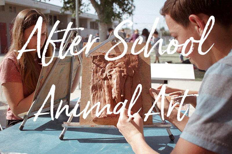 After School Animal Art